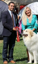 President Suceava Kennel Club